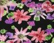 画像3: gravevault グレイブボールト★Pssiflora ブラック ローライズタイプ (3)